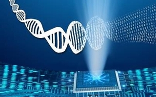 Launch of a new Genome Canada competition in Bioinformatics and Computational Biology (B/CB)